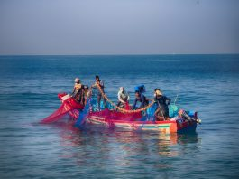 Indian fishermen pulling in nets off the coast of Kerala